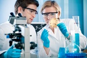 לימודי ביולוגיה