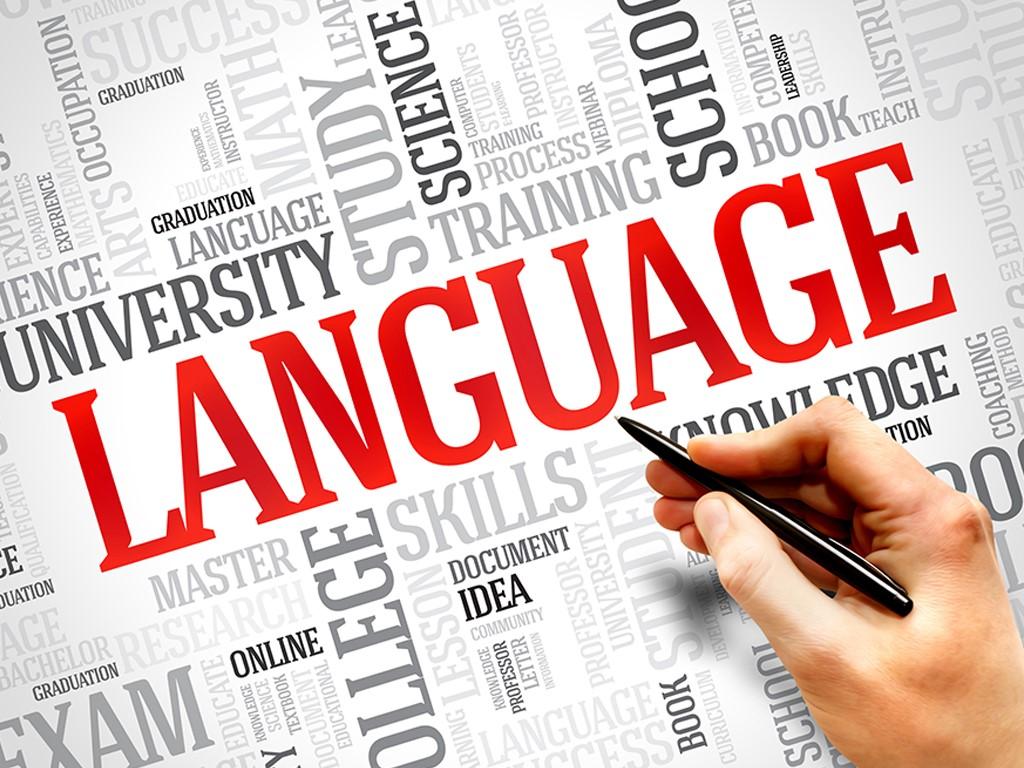 האם כל נושא הדקדוק באנגלית שלמדנו בבית ספר באמת חשוב?