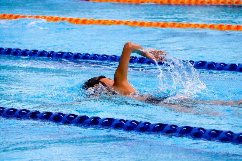 לימודי מדריכי שחייה